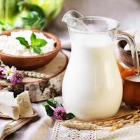 kozje mlijeko sir jogurt mlijecni proizvodi Shutterstock 219830746