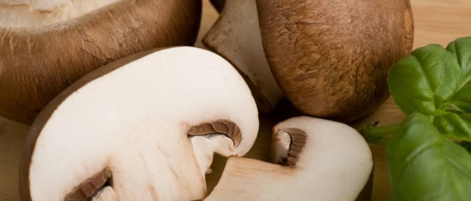 omega 3 tablete za mršavljenje šampinjoni mršavljenje