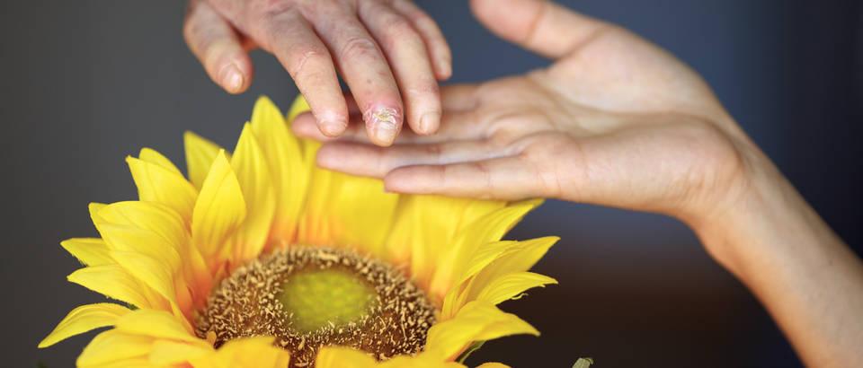 Ruka u ruci, službena fotografija kampanje