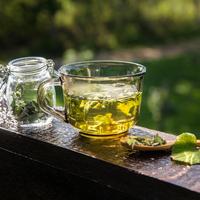 caj , biljke, Shutterstock 1496913131