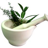 Biljke, zacini