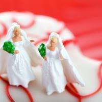 Lezbijski par, vjencanje, homoseksualnost, torta