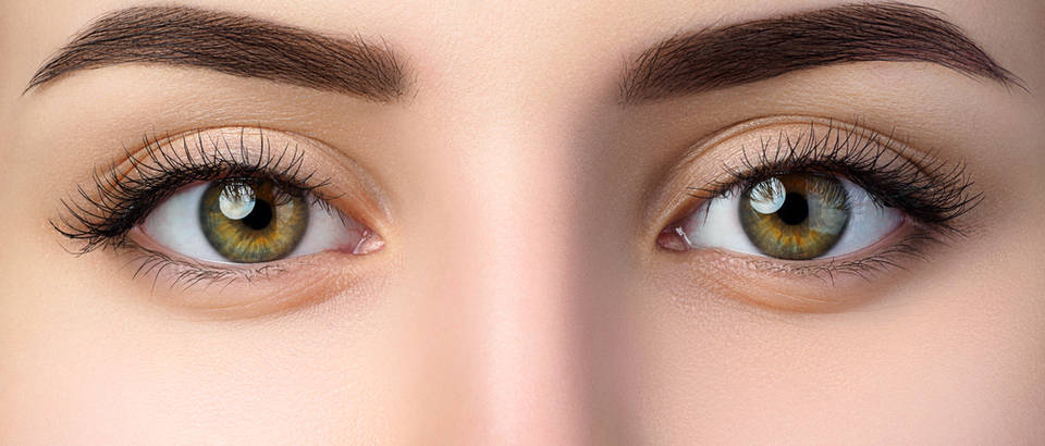 obrve, Shutterstock 749549524