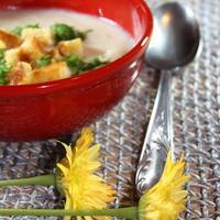 Krem juha od cvjetace i Camemberta