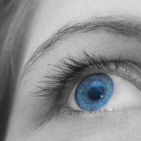 oko-vid-11