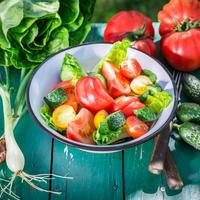 salata, luk, paradajz, krastav ci