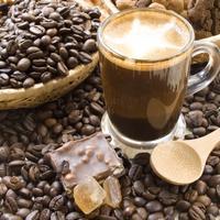 kava-kofein3