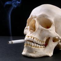 Pusenje, cigarete
