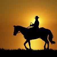 Konj, jahac