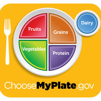 Piramida zdrave prehrane, my plate, tanjur zdrave prehrane