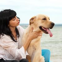 zena i pas, kucni ljubimac