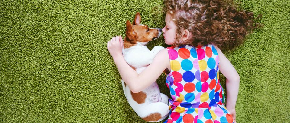 pas, Shutterstock 451309687