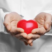 Doktor srce kardiovaskularne bolesti shutterstock 522091120