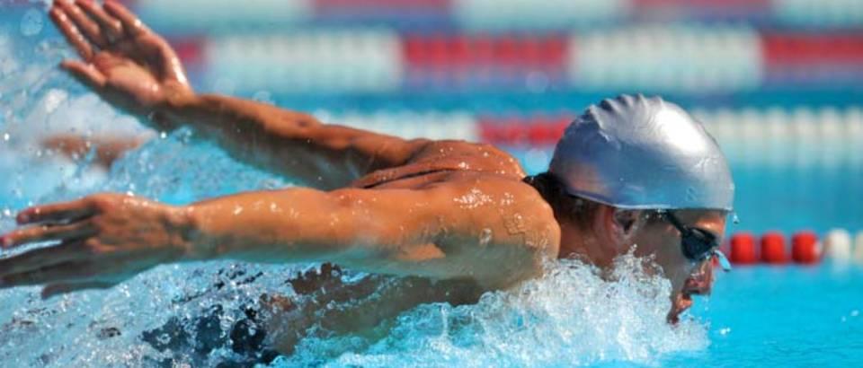 plivanje, delfin3