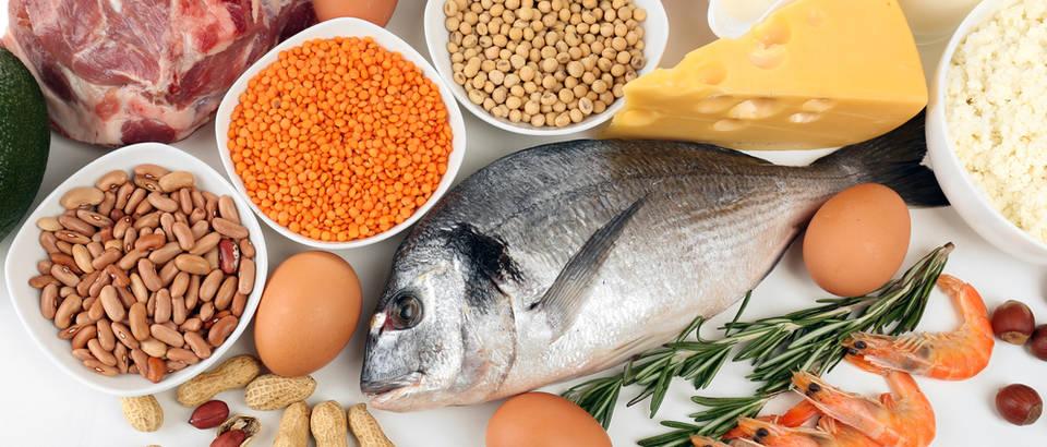 Fosfor bjelančevine proteini meso mliječni proizvodi riba namirnice mahunarke škampi shutterstock 244615012