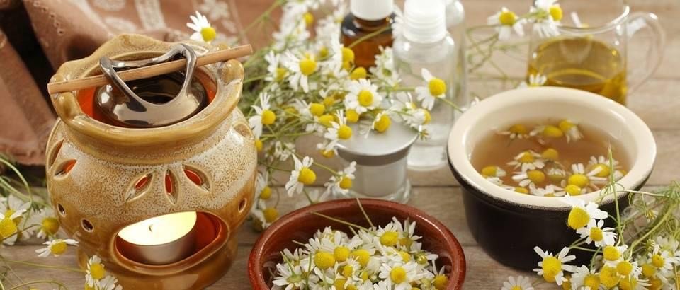 Kamilica aromaterapija ljekovito bilje shutterstock 392129548