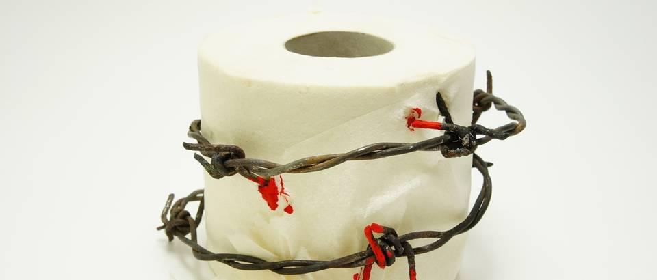 toalet papir, rola papira, hemoroidi, shutterstock
