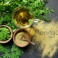 Moringa shutterstock