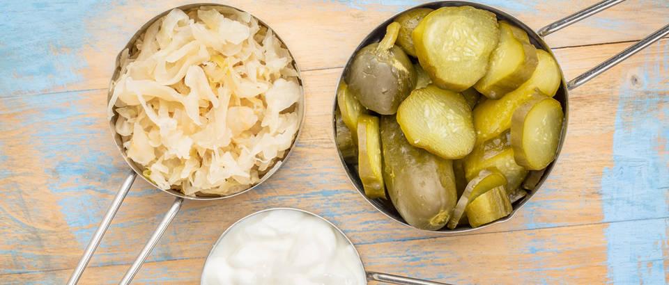 jogurt, kiselo zelje, krastavci Shutterstock 344352596