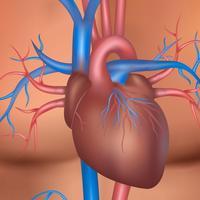 srce-srcani-udar-7