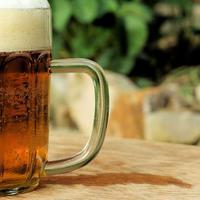 Pivo zbog udjela polifenola može inhibirati rast patogenih te stimulirati rast dobrih bakterija