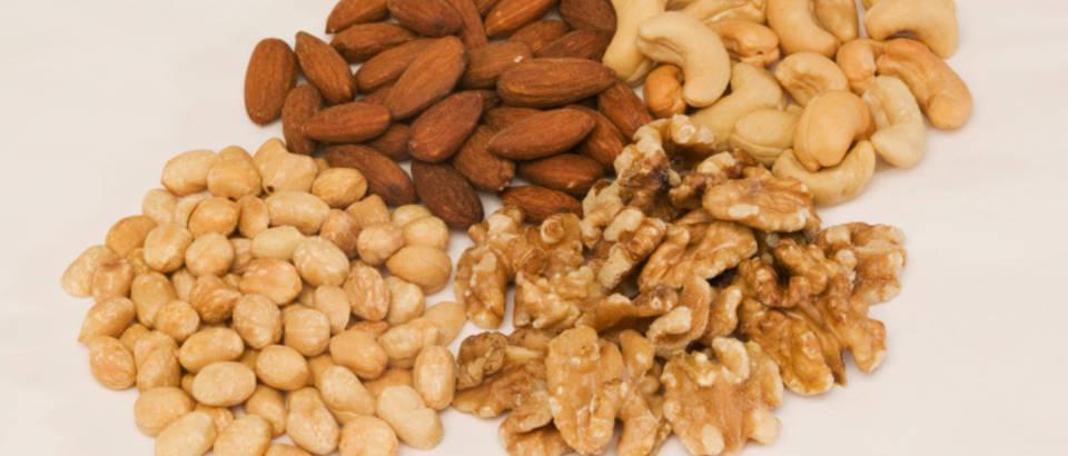 orasasti-plodovi-orah-badem-ljesnjak5