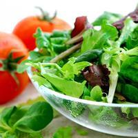 salata svjeza rajcica