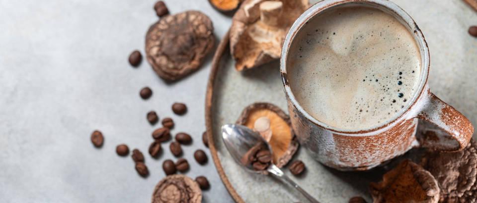Kava od gljiva