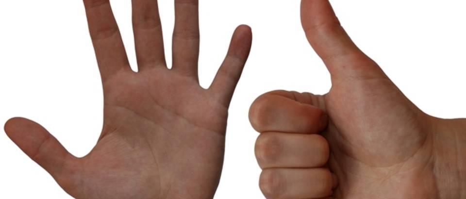 sest, brojanje, racunanje, prsti, gesta