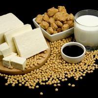 soja proizvodi