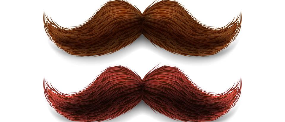 Brkovi, Movember, Shutterstock 285465257