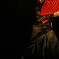flamenco-saška-šašić3