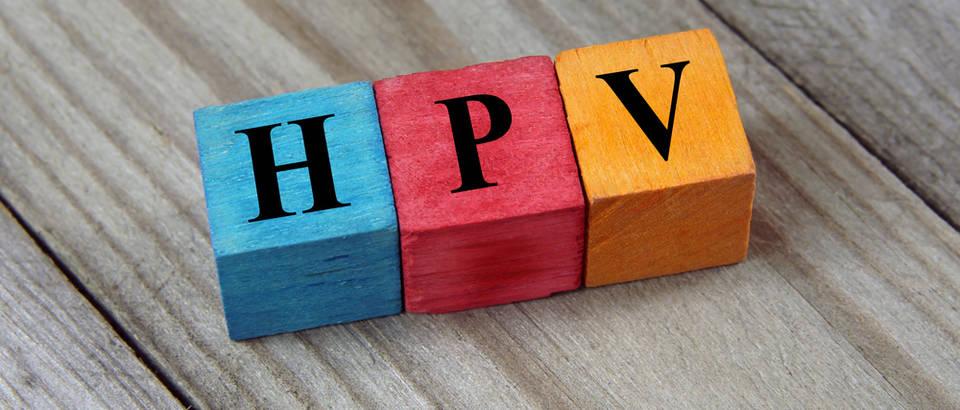 HPV shutterstock 381791905