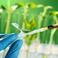 Biljke lijekovi laboratorij znanost znanstvenici shutterstock 132471944