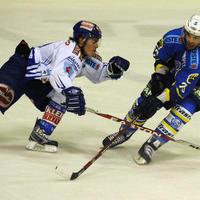 Hokej, Medvescak