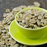 Ilustr zelena kava4