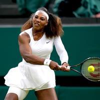 Serena williams pixsell