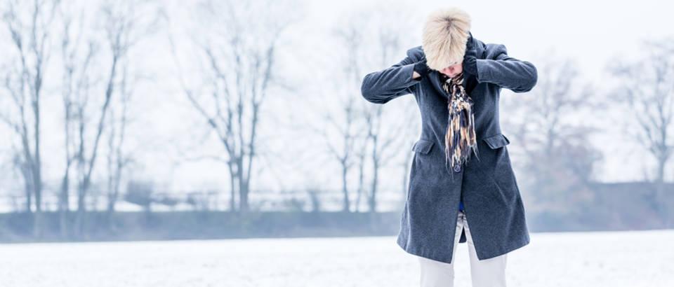 tuga, zima Shutterstock 363503873