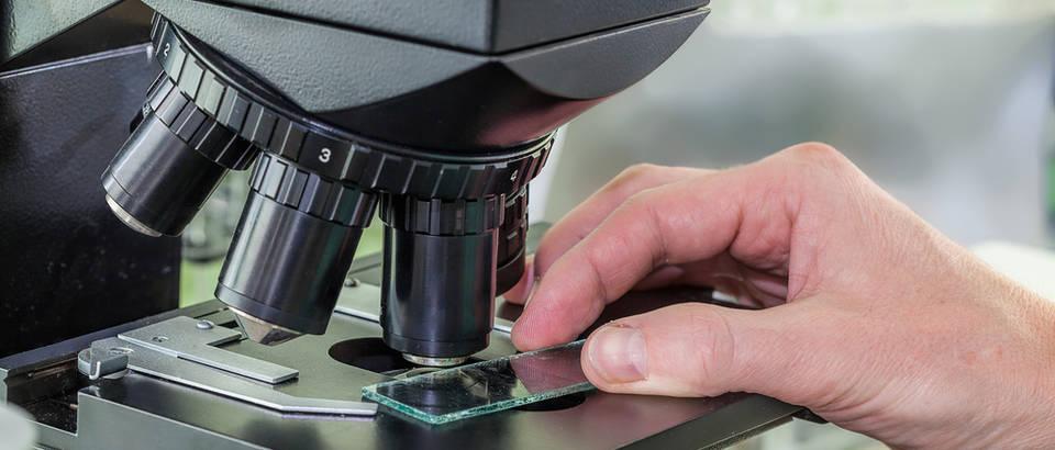 mikroskop, Shutterstock 153557951