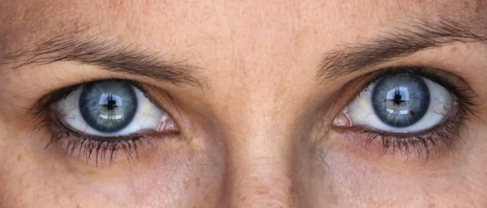 Vid, oci, oko