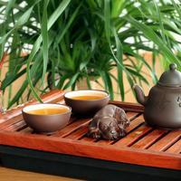 caj-biljni-kineski2
