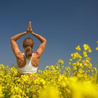 joga, yoga, opustanje, priroda, vjezbanje
