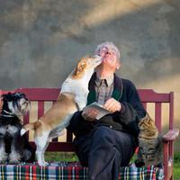 Pas čovjek prijatelj