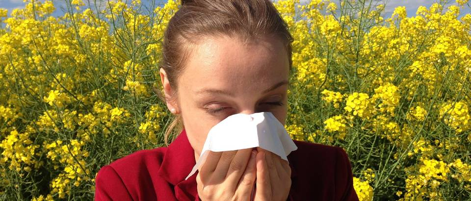 Allergy naslovna