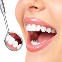 zubi, b2 centarShutterstock 58914496
