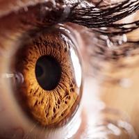 Oči oko zdravlje očiju shutterstock 245692879