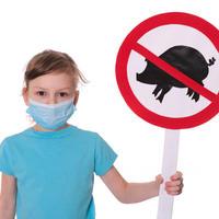 svinjska gripa1