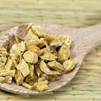slatki-korijen-sladic-biljka8