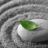 Zen, opustanje, spa, wellness