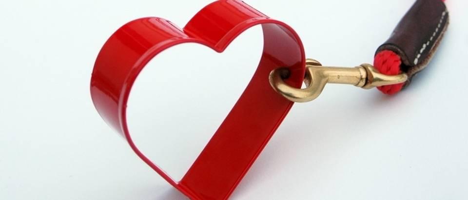 Ljubav srce shutterstock 8687365
